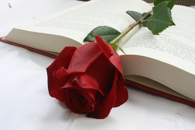 Rosa y libros al día de San Jorge